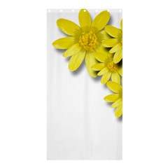 Flowers Spring Yellow Spring Onion Shower Curtain 36  X 72  (stall)