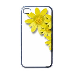 Flowers Spring Yellow Spring Onion Apple iPhone 4 Case (Black)