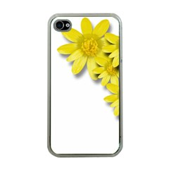 Flowers Spring Yellow Spring Onion Apple Iphone 4 Case (clear)