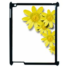 Flowers Spring Yellow Spring Onion Apple Ipad 2 Case (black)