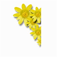 Flowers Spring Yellow Spring Onion Small Garden Flag (two Sides)