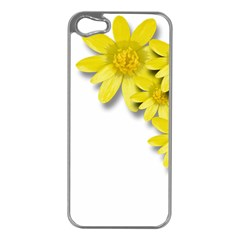 Flowers Spring Yellow Spring Onion Apple iPhone 5 Case (Silver)