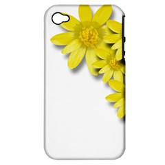 Flowers Spring Yellow Spring Onion Apple Iphone 4/4s Hardshell Case (pc+silicone)