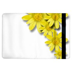 Flowers Spring Yellow Spring Onion Ipad Air Flip