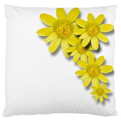 Flowers Spring Yellow Spring Onion Standard Flano Cushion Case (One Side)