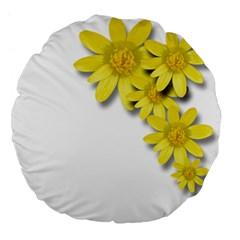 Flowers Spring Yellow Spring Onion Large 18  Premium Flano Round Cushions