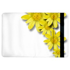 Flowers Spring Yellow Spring Onion Ipad Air 2 Flip