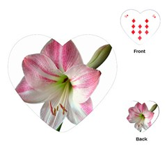 Flower Blossom Bloom Amaryllis Playing Cards (Heart)