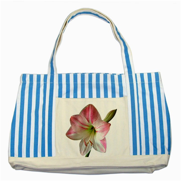 Flower Blossom Bloom Amaryllis Striped Blue Tote Bag