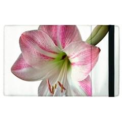 Flower Blossom Bloom Amaryllis Apple Ipad 3/4 Flip Case