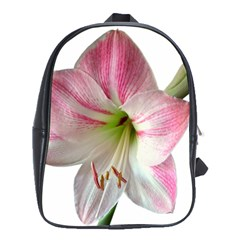 Flower Blossom Bloom Amaryllis School Bags (xl)