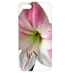 Flower Blossom Bloom Amaryllis Apple Iphone 5 Hardshell Case With Stand