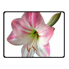 Flower Blossom Bloom Amaryllis Double Sided Fleece Blanket (small)