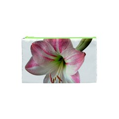 Flower Blossom Bloom Amaryllis Cosmetic Bag (xs)