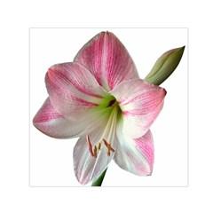 Flower Blossom Bloom Amaryllis Small Satin Scarf (square)