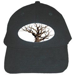 Tree Isolated Dead Plant Weathered Black Cap