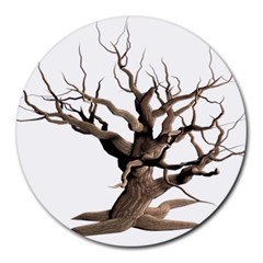 Tree Isolated Dead Plant Weathered Round Mousepads