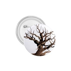 Tree Isolated Dead Plant Weathered 1 75  Buttons
