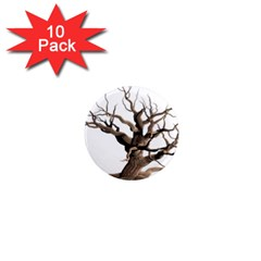 Tree Isolated Dead Plant Weathered 1  Mini Magnet (10 pack)