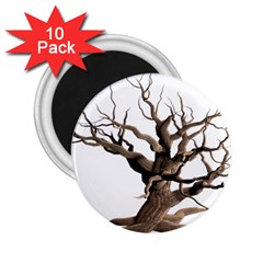 Tree Isolated Dead Plant Weathered 2 25  Magnets (10 Pack)