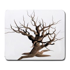 Tree Isolated Dead Plant Weathered Large Mousepads