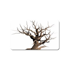 Tree Isolated Dead Plant Weathered Magnet (Name Card)