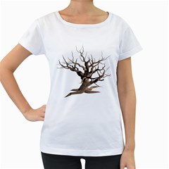 Tree Isolated Dead Plant Weathered Women s Loose Fit T Shirt (white)
