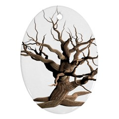 Tree Isolated Dead Plant Weathered Oval Ornament (two Sides)