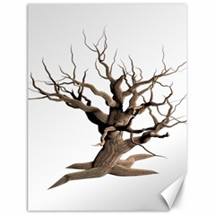Tree Isolated Dead Plant Weathered Canvas 18  X 24
