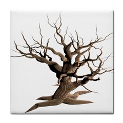 Tree Isolated Dead Plant Weathered Face Towel