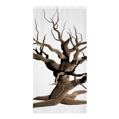 Tree Isolated Dead Plant Weathered Shower Curtain 36  X 72  (stall)