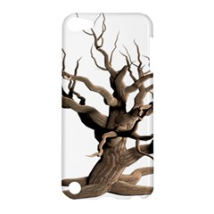 Tree Isolated Dead Plant Weathered Apple Ipod Touch 5 Hardshell Case