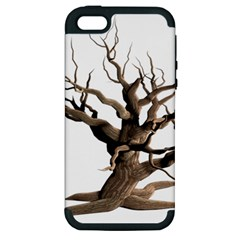Tree Isolated Dead Plant Weathered Apple Iphone 5 Hardshell Case (pc+silicone)
