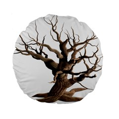 Tree Isolated Dead Plant Weathered Standard 15  Premium Round Cushions