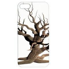 Tree Isolated Dead Plant Weathered Apple iPhone 5 Hardshell Case with Stand