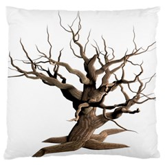 Tree Isolated Dead Plant Weathered Large Flano Cushion Case (one Side)
