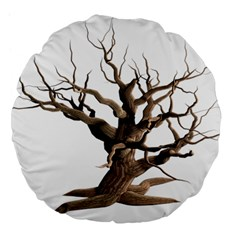 Tree Isolated Dead Plant Weathered Large 18  Premium Flano Round Cushions