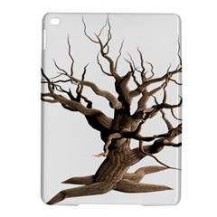 Tree Isolated Dead Plant Weathered Ipad Air 2 Hardshell Cases