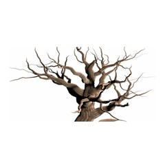 Tree Isolated Dead Plant Weathered Satin Wrap