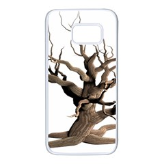 Tree Isolated Dead Plant Weathered Samsung Galaxy S7 White Seamless Case