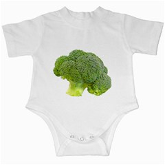 Broccoli Bunch Floret Fresh Food Infant Creepers