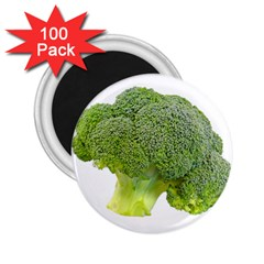 Broccoli Bunch Floret Fresh Food 2 25  Magnets (100 Pack)