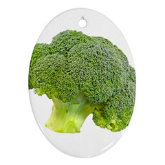 Broccoli Bunch Floret Fresh Food Oval Ornament (Two Sides)
