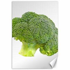Broccoli Bunch Floret Fresh Food Canvas 12  X 18