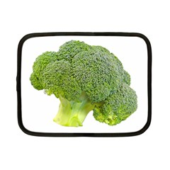 Broccoli Bunch Floret Fresh Food Netbook Case (Small)