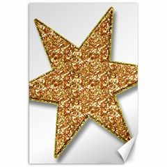 Star Glitter Canvas 20  x 30