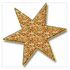 Star Glitter Large Satin Scarf (square)