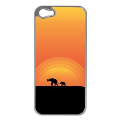 Elephant Baby Elephant Wildlife Apple Iphone 5 Case (silver)