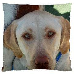 2 Yellow Lab Standard Flano Cushion Case (One Side)