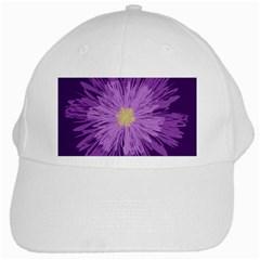 Purple Flower Floral Purple Flowers White Cap